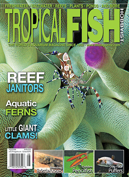 Download Tropical Fish Hobbyist - August 2008 - PDF Magazine