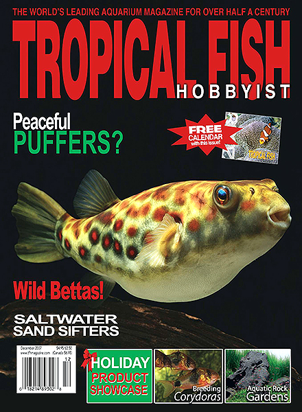 Download Tropical Fish Hobbyist - December 2007 - PDF Magazine