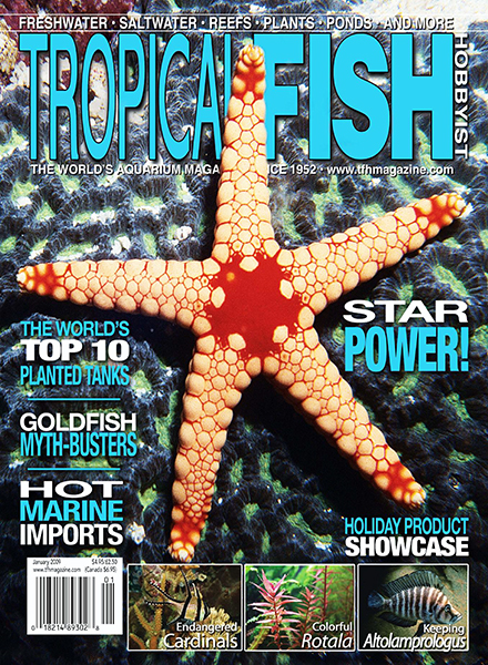 Download Tropical Fish Hobbyist - January 2009 - PDF Magazine