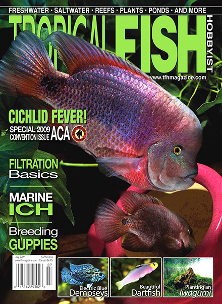 Download Tropical Fish Hobbyist - July 2009 - PDF Magazine