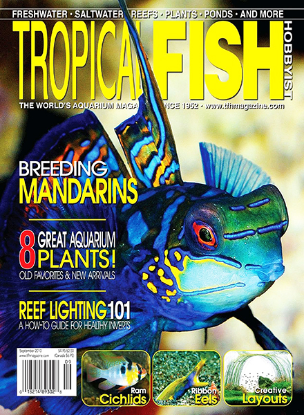 Tropical fish hobbyist magazine sept 2012 for Tropical fish magazine