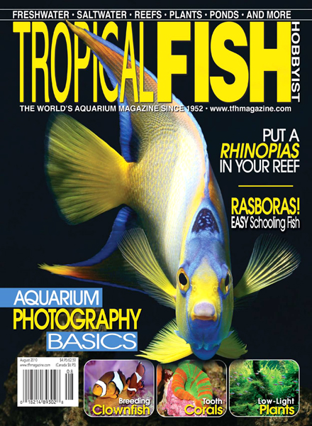 Download tropical fish hobbyist august 2010 pdf magazine for Tropical fish magazine