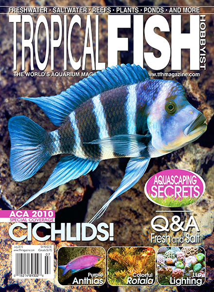 Download Tropical Fish Hobbyist - July 2010 - PDF Magazine