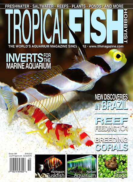 Download tropical fish hobbyist october 2009 pdf magazine for Tropical fish magazine