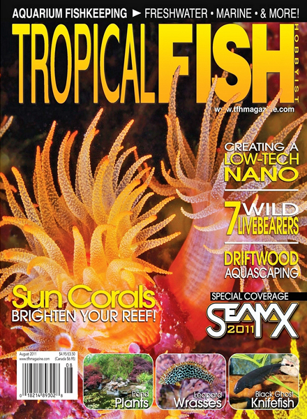 Download tropical fish hobbyist august 2011 pdf magazine for Tropical fish hobbyist
