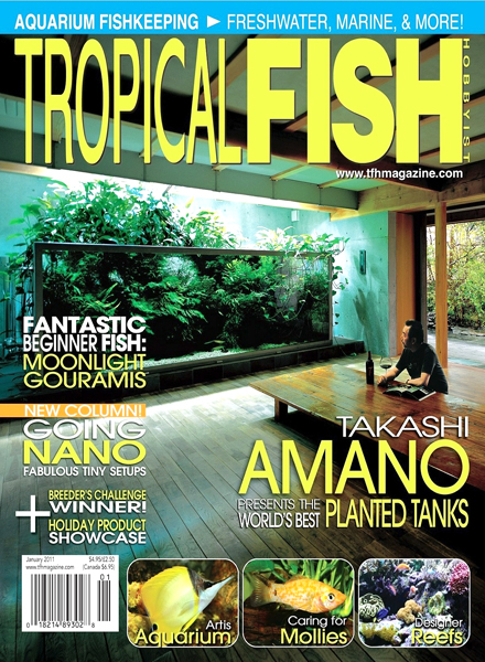 Download tropical fish hobbyist january 2011 pdf magazine for Tropical fish hobbyist