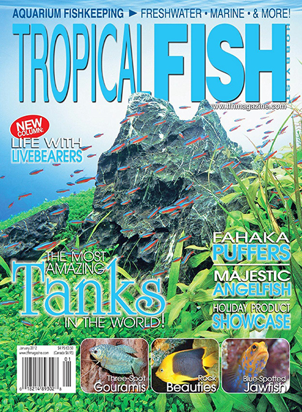 Download Tropical Fish Hobbyist - January 2012 - PDF Magazine