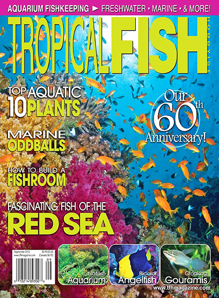 Download Tropical Fish Hobbyist - September 2012 - PDF Magazine