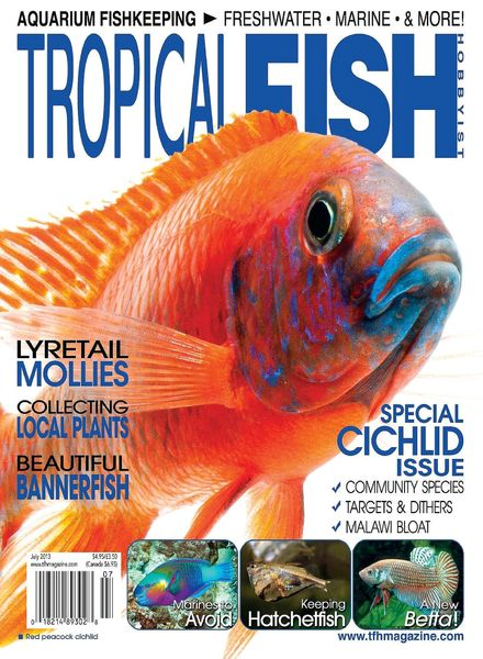 Download tropical fish hobbyist july 2013 pdf magazine for Tropical fish magazine