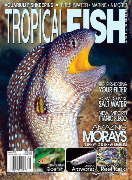 Download tropical fish hobbyist august 2013 pdf magazine for Tropical fish magazine
