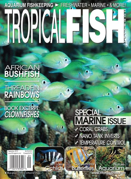 Download tropical fish hobbyist september 2013 pdf for Tropical fish magazine