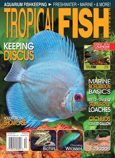 Download Tropical Fish Hobbyist Magazine - December 2013 - PDF ...