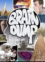 How It Works Brain Dump - Issue 10, 2014