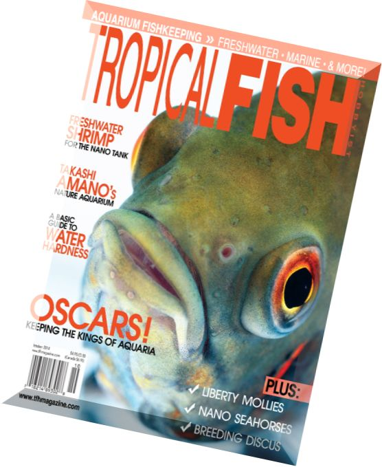 Download tropical fish hobbyist october 2014 pdf magazine for Tropical fish hobbyist