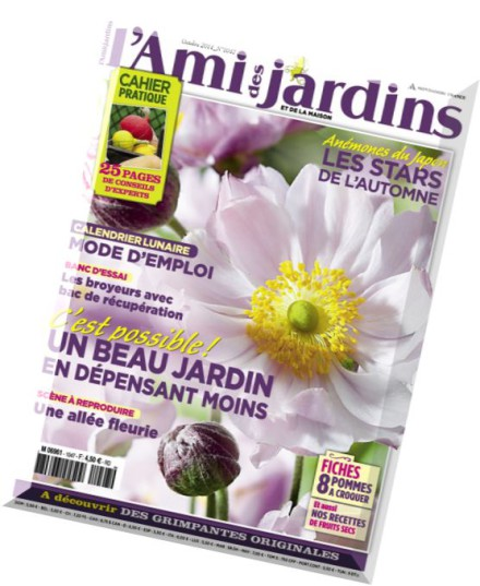 Download l ami des jardins et de la maison n 1047 - Maisons et jardins magazine ...