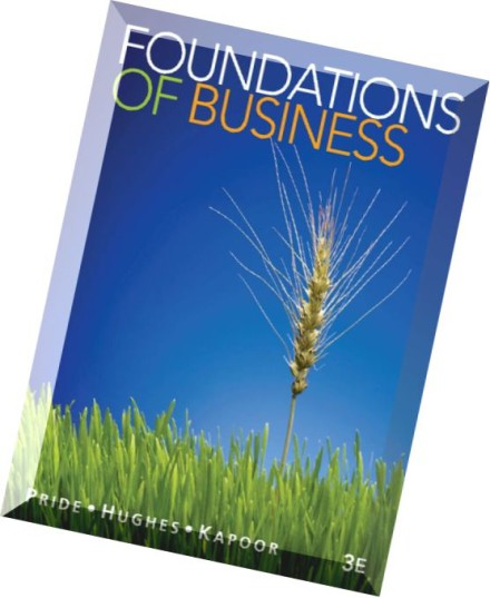 foundations of business 5th edition pdf