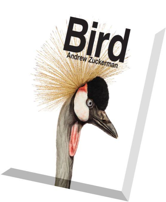 To kill a mockingbird summary movie