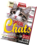 100 Idees Actuelles N 2 - Special Chats 2014