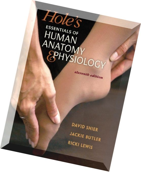 Anatomy And Physiology Textbooks Homework Help and 5681024 ...