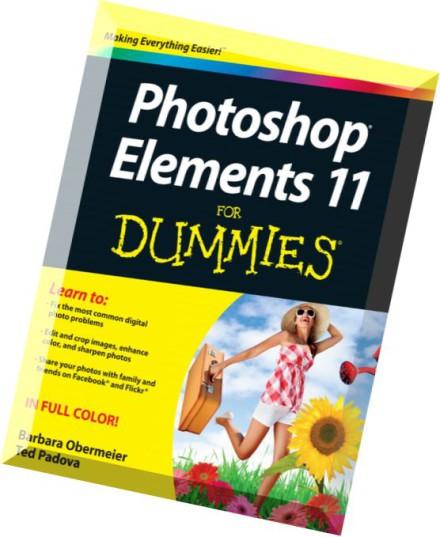 stata 13 for dummies pdf