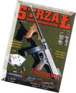 Strzal 2008-06 (62)