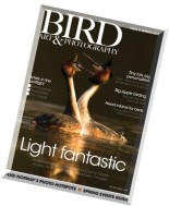 Bird Art & Photography Magazine - Spring 2011