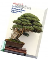 France Bonsai - Fevrier 2016