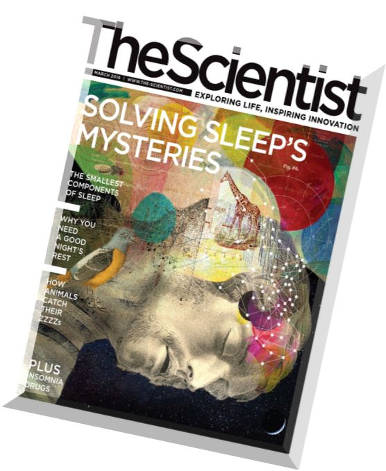 new scientist dating To create dating new scientist review we checked datingnewscientistcom reputation at lots of sites, including siteadvisor and mywot we found that datingnewscientist is safe for children and does not look fraudulent.