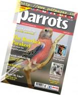 Parrots - April 2017