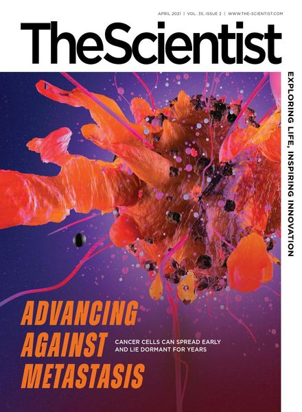 The Scientist – April 2021
