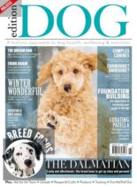 Edition Dog – Issue 14 – 29 November 2019