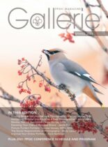 Gallerie Magazine – Spring 2021