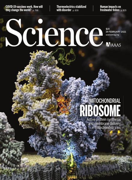 Science – 19 February 2021