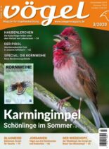 VOGEL – Magazin fur Vogelbeobachtung – 05 Juni 2020