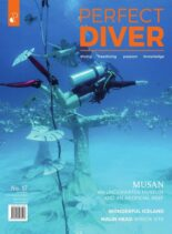 Perfect Diver – September-October 2021